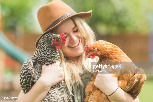 woman holds two chickens in her back yard farm - young animal stock pictures, royalty-free photos & images