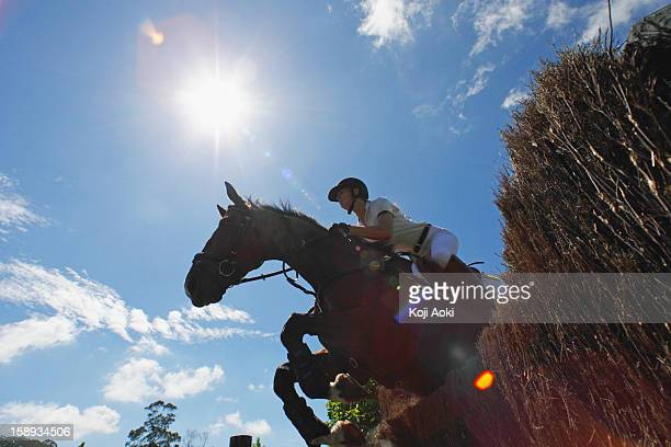 woman horseback rider jumping horse - dressage stock pictures, royalty-free photos & images