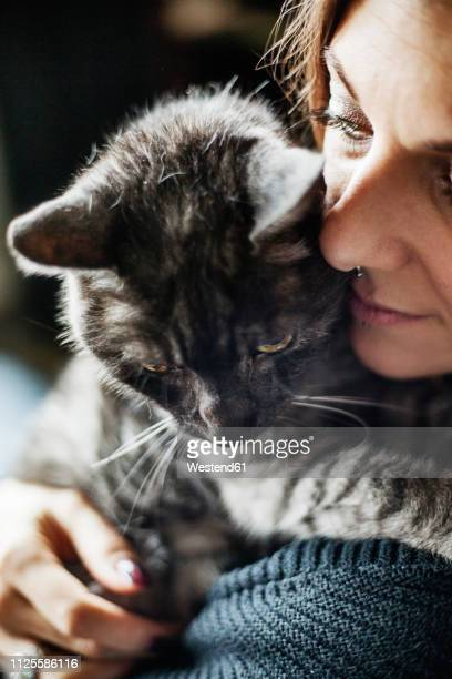 woman hugging her grey tabby cat - hygge stock-fotos und bilder