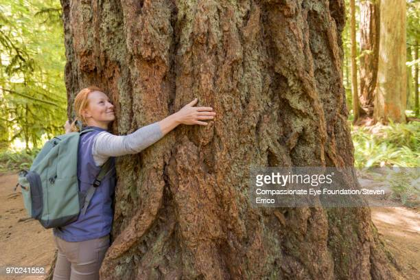 woman hugging large tree in forest - environmentalist stock pictures, royalty-free photos & images