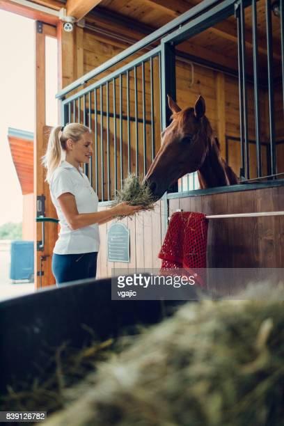 Woman in a barn feeding her horse