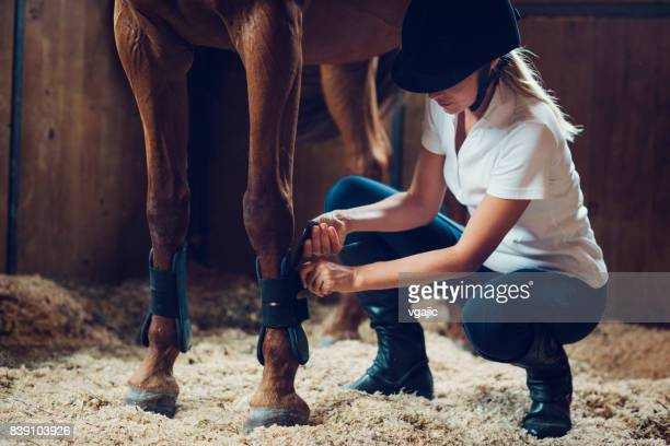 woman in a barn with her horse - riding hat stock pictures, royalty-free photos & images