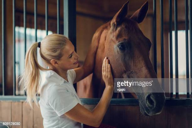 woman in a barn with her horse - horse stock pictures, royalty-free photos & images