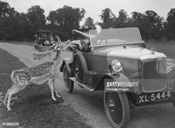 London in the 1920 39 s pictures and photos getty images - Richmond old deer park swimming pool ...