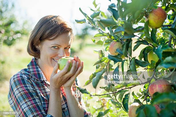 A woman in a plaid shirt smelling the freshly picked ripe apple in her hand at an organic fruit farm.