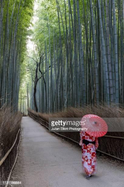a woman in a traditional kimono walks through the arashiyama bamboo grove in kyoto, japan. - arashiyama stock pictures, royalty-free photos & images