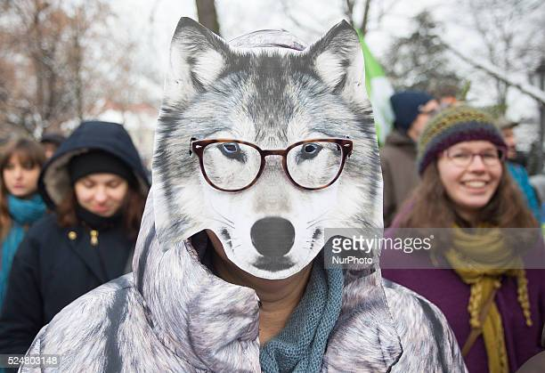 """Woman in a wolf mask on the protest in defense of the Bialowieza Forest called """"March of the Ents"""" in Warsaw, 17 January Poland"""