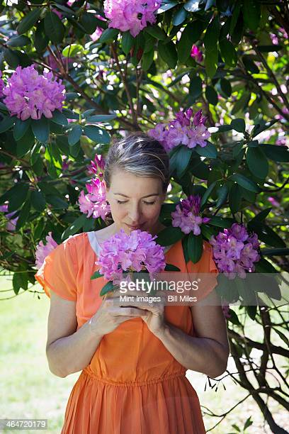 A woman in an orange summer dress standing under a flowering rhododendron shrub, holding a large purple flowerhead.