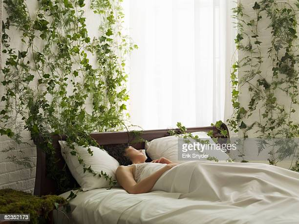 woman in bed, vines hanging from wall - nature stock pictures, royalty-free photos & images