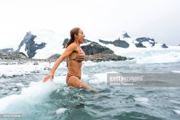 woman in bikini in sea, cuverville island, antarctic peninsula - antarctica stock pictures, royalty-free photos & images
