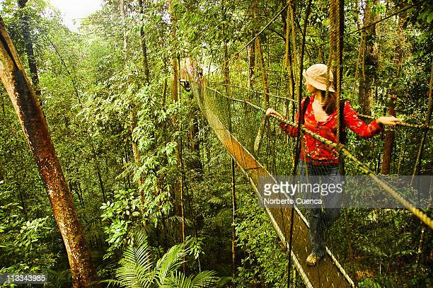 Woman in canopy walkway