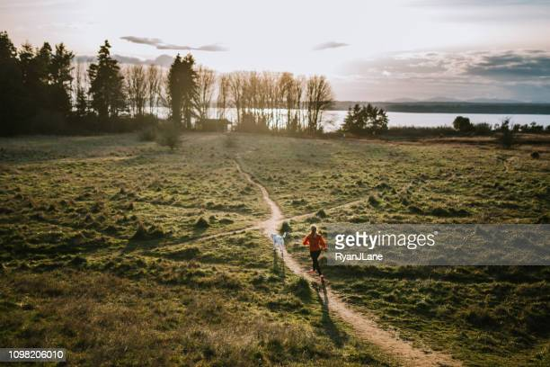 woman in car with pet dog - cross country running stock pictures, royalty-free photos & images