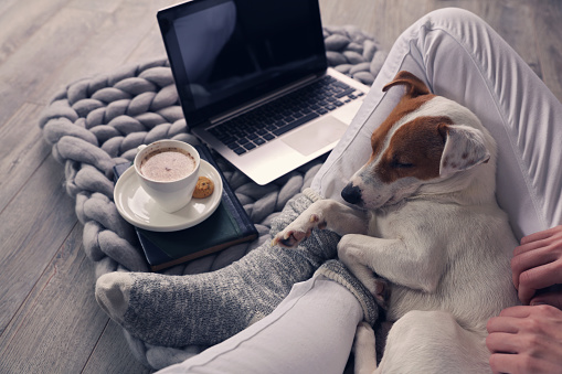 Woman in cozy home wear relaxing at home ,drinking cacao, using laptop. Soft, comfy lifestyle. 939295242