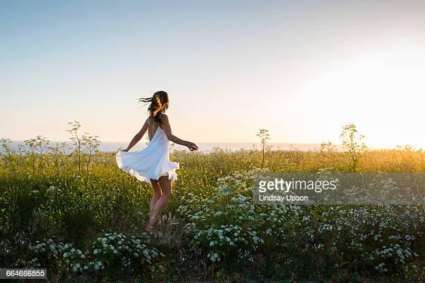 woman in field of wildflowers - minivestido imagens e fotografias de stock
