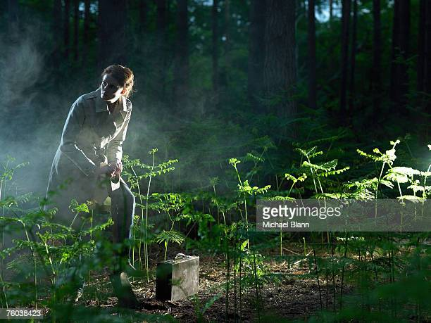 woman in forest, digging hole near briefcase among ferns - enterrar imagens e fotografias de stock