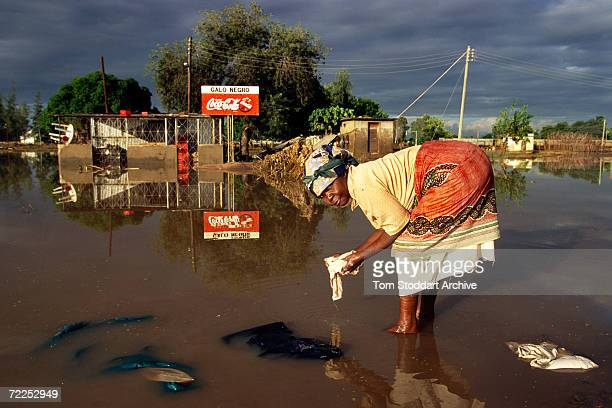 A woman in front of an advert for CocaCola washing her clothes in filthy flood water after rains engulfed thousands of acres of Mozambique