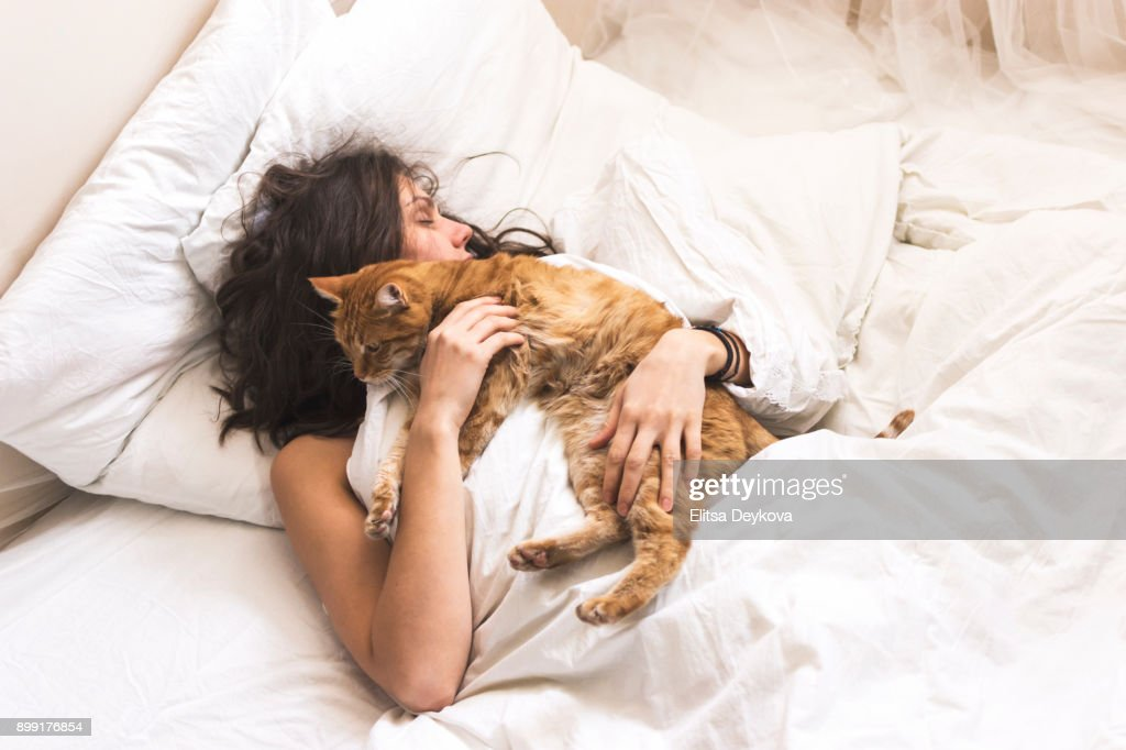 Woman in her bed : Stock Photo