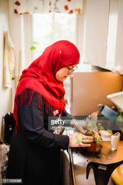 woman in kitchen potting plant - västra götaland county stock pictures, royalty-free photos & images