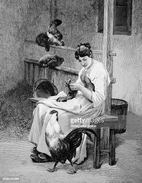 Woman in knitting living in a room People and animals chickens together 19th century farm illustration woodcut from 1880