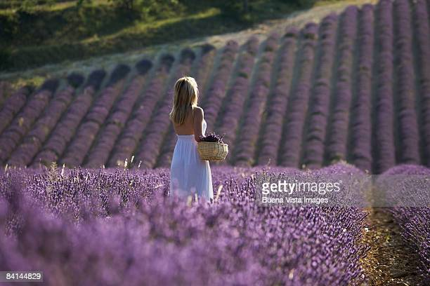 Woman in Lavender field in Provence, France.