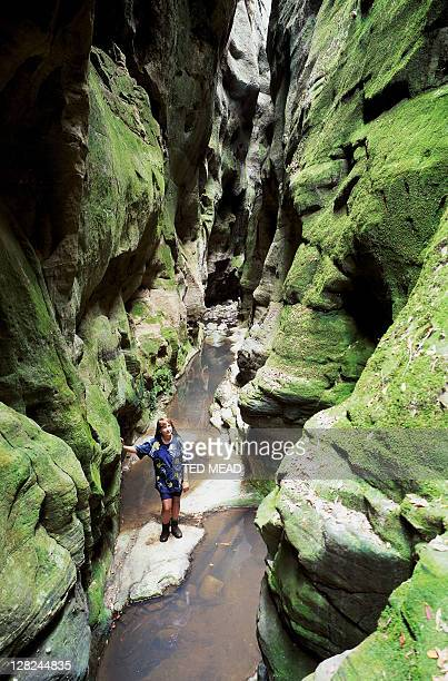 woman in mickeys creek gorge, carnarvon gorge np, qld, australia
