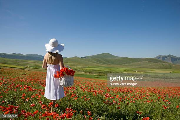 woman in poppies field.  - castelluccio stock photos and pictures