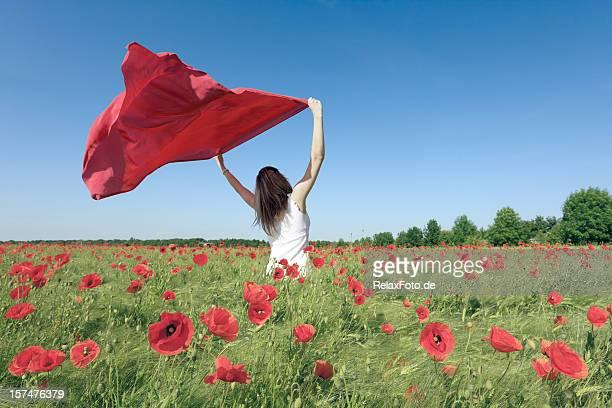 Woman in Poppy Field Holding red scarf to Wind (XXXL)