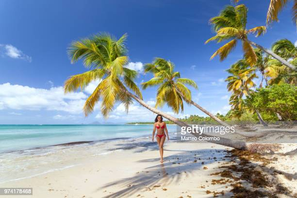 woman in red bikini walking on tropical beach in the caribbean - femme antillaise photos et images de collection