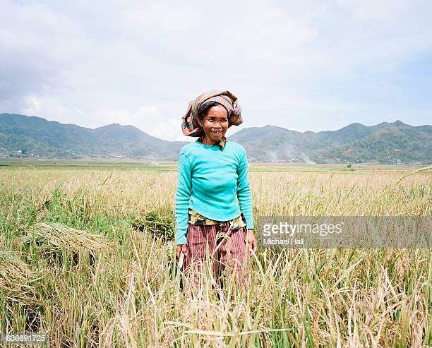Woman in ricefields