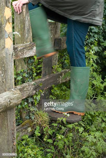 woman in rubber boots climbing over wooden stile - lyn holly coorg stock pictures, royalty-free photos & images