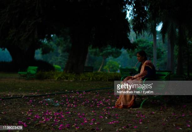 woman in sari sitting on bench at park - sari stock pictures, royalty-free photos & images