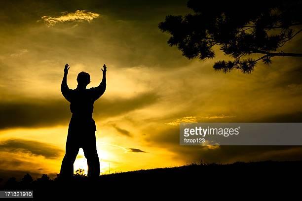 Mujer de silueta practicar artes marciales, karate.  Puesta de sol.  Al aire libre.  Sky.