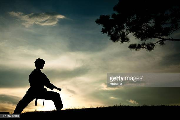 woman in silhouette practicing martial arts, karate. sunset. outdoors. sky. - submission combat sport stock pictures, royalty-free photos & images