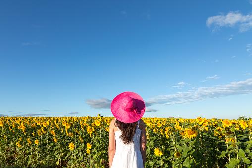 Woman in sunflowers field, Provence, France - gettyimageskorea