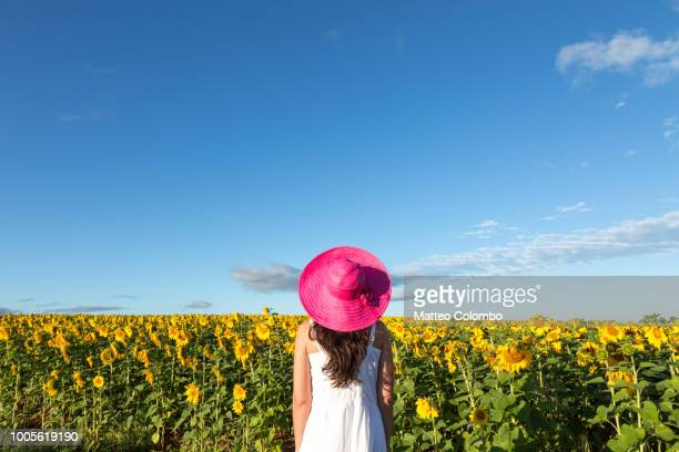 woman in sunflowers field, provence, france - multi colored hat stock pictures, royalty-free photos & images