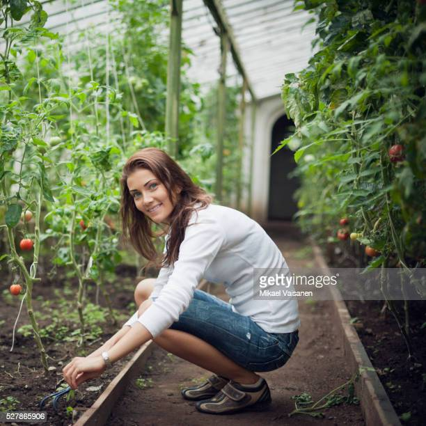 Woman in tomato greenhouse