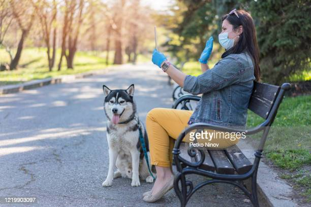 woman in video conference in the park while walking her dog in the lockdown city - avoidance stock pictures, royalty-free photos & images
