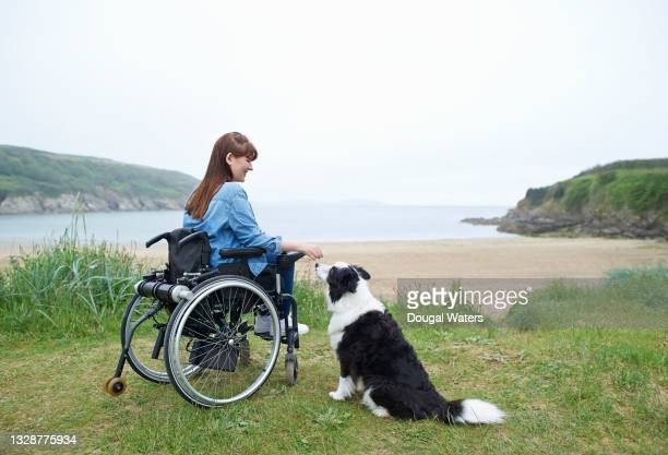 woman in wheelchair with dog at beach. - dougal waters stock pictures, royalty-free photos & images
