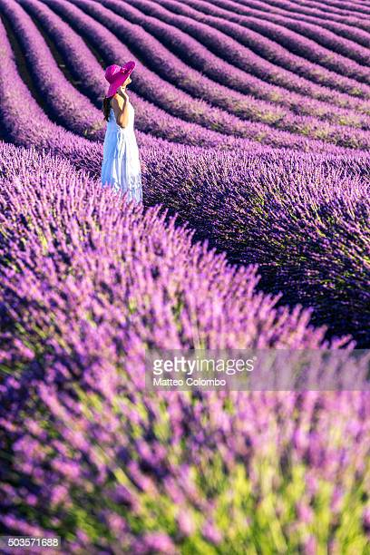 Woman in white in the lavender, Provence, France