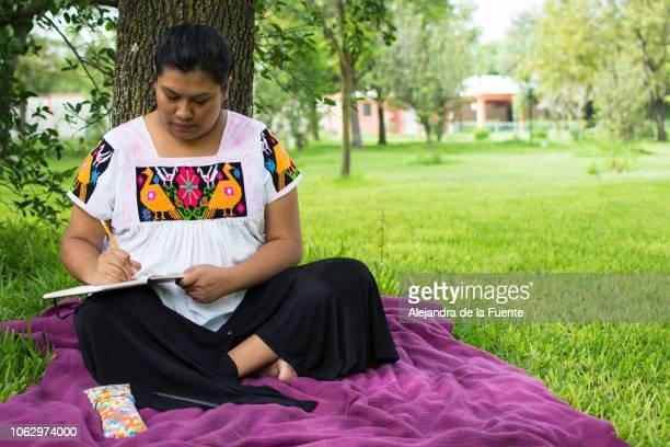 young woman reading and writing on notebook. - indigenas mexicanos fotografías e imágenes de stock