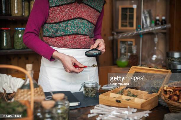 woman inspecting cannabis buds in hemp store - stock photo - cannabis store stock pictures, royalty-free photos & images