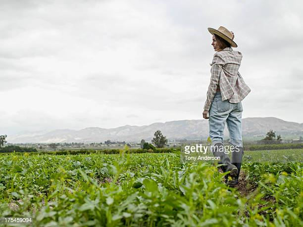 Woman inspecting farm field