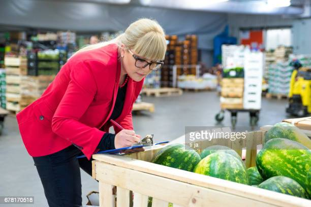 Woman inspector checking watermelons at warehouse