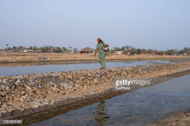 Woman is collecting drinking water, Salinity effect seen in soil as a result trees has died after Cyclone amphan hit in Satkhira, Bangladesh on March...