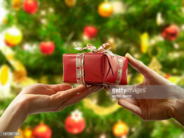 Woman is offering Christmas gift, Christmas tree in the background