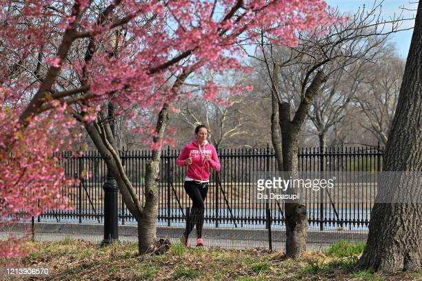 A woman is seen jogging in Central Park as the coronavirus continues to spread across the United States on March 21 2020 in New York City The World...