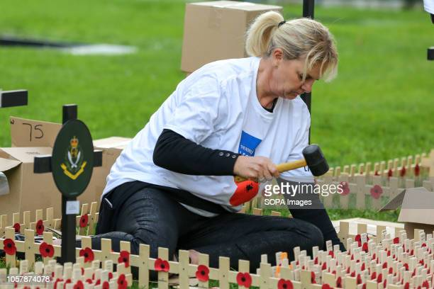 A woman is seen planting crosses during the preparations Volunteers from the British Legion prepare the Field of Remembrance at Westminster Abbey in...