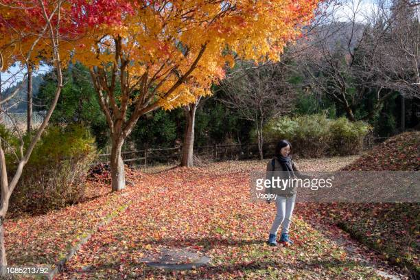 a woman is selfie with the maple tree, kyoto, japan - vsojoy stock pictures, royalty-free photos & images