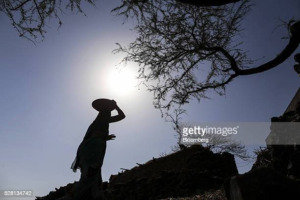 A woman is silhouetted against the sun as she carries a container of dung on her head in Beed district Maharashtra India on Friday April 15 2016...