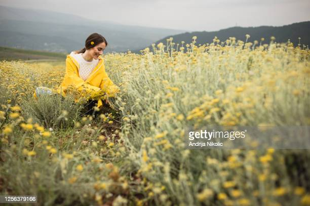 frau sitzt im kräuterfeld und genießt die natur - kräuter stock-fotos und bilder